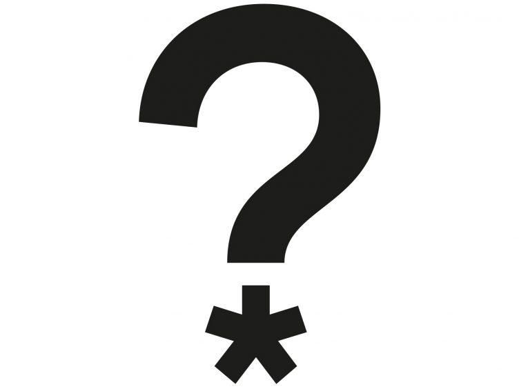Über die Unmöglichkeit, in Genderfragen politisch korrekt zu schreiben … 1